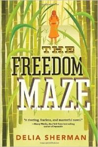 FreedomMaze